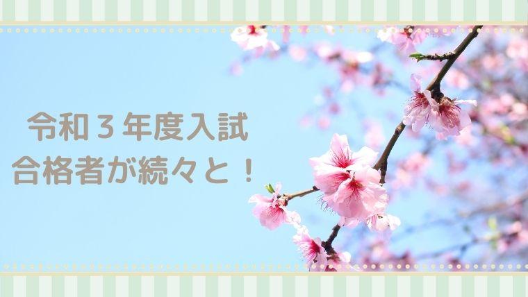 たくさんの桜の花が咲いています!合格おめでとう!